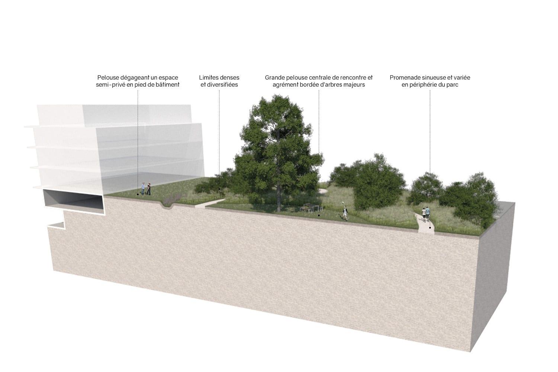 bloc-diagramme-ecoquartier-echallens-record-crepon-est-codha-vimade-al30-architecture-paysage-parc-noue-ecologie-biodiversité