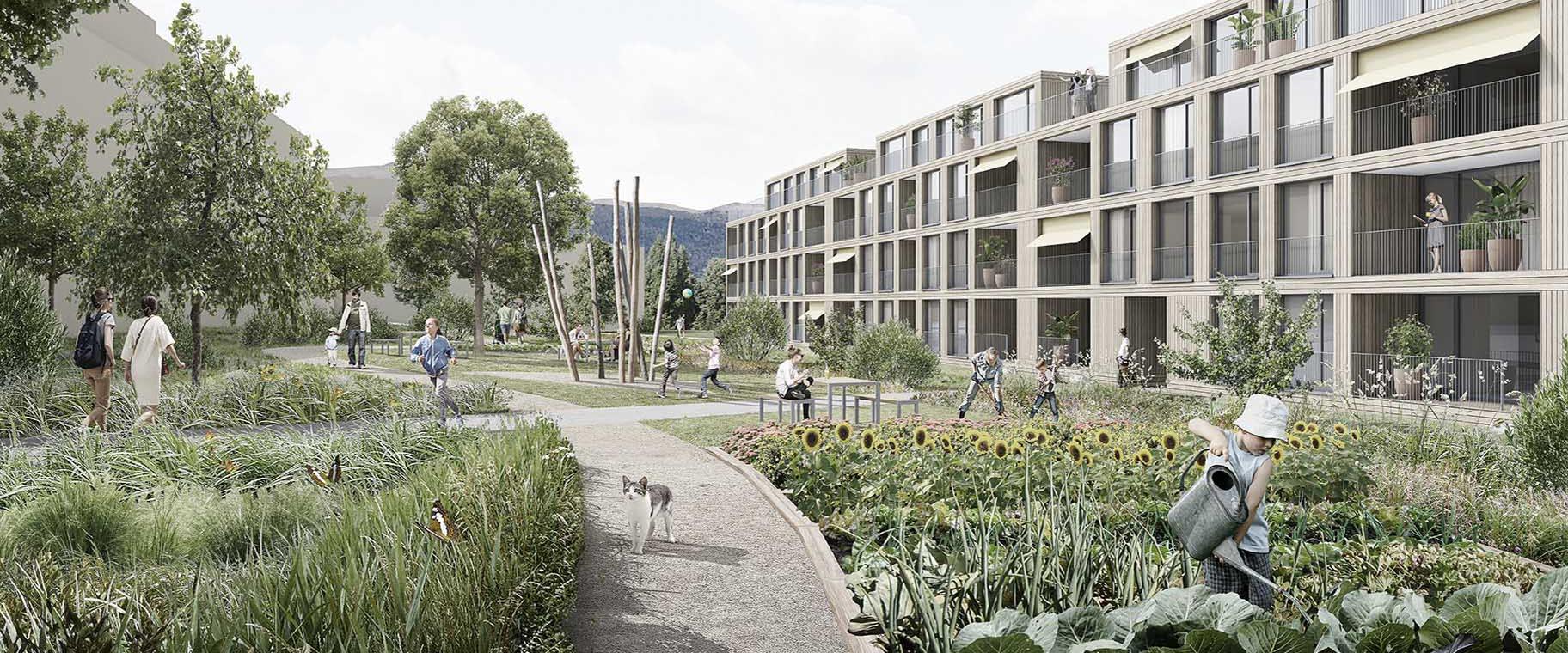 perpective-ecoquartier-echallens-crepon-est-codha-vimade-al30-architecture-paysage-jardins-partagés-ecologie-coopérative-entete
