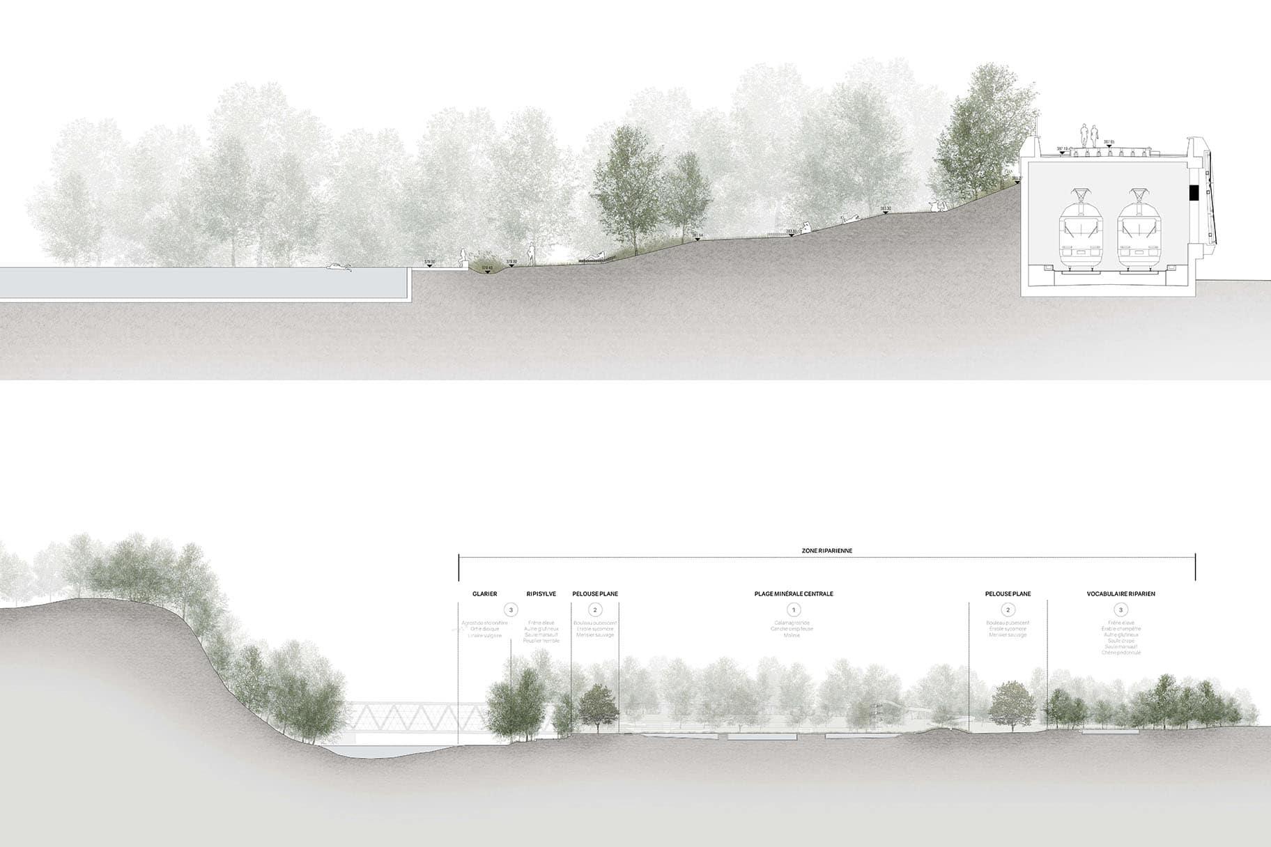 coupes-concours-piscine-fontenette-carouge-projet-vimade-architectes-paysagistes-collinfontaine-paysage-parc-ceva-espaces