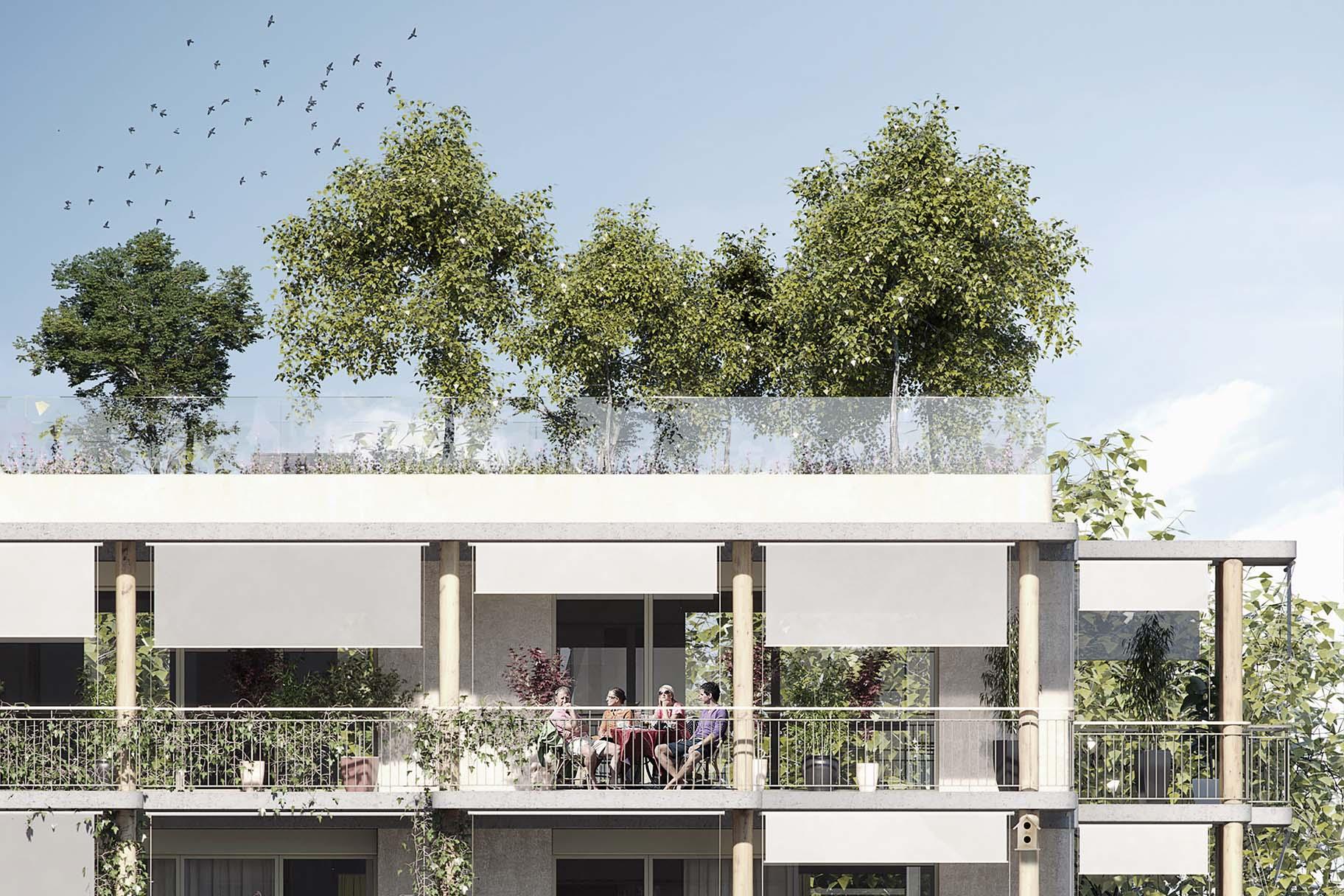 Projet lauréat pour le concours Chapelle-les-Sciers à Plan-les-Ouates par les bureaux ATBA et VIMADE pour la coopérative la Bistoquette, toiture et façade végétalisé, et nature en ville.