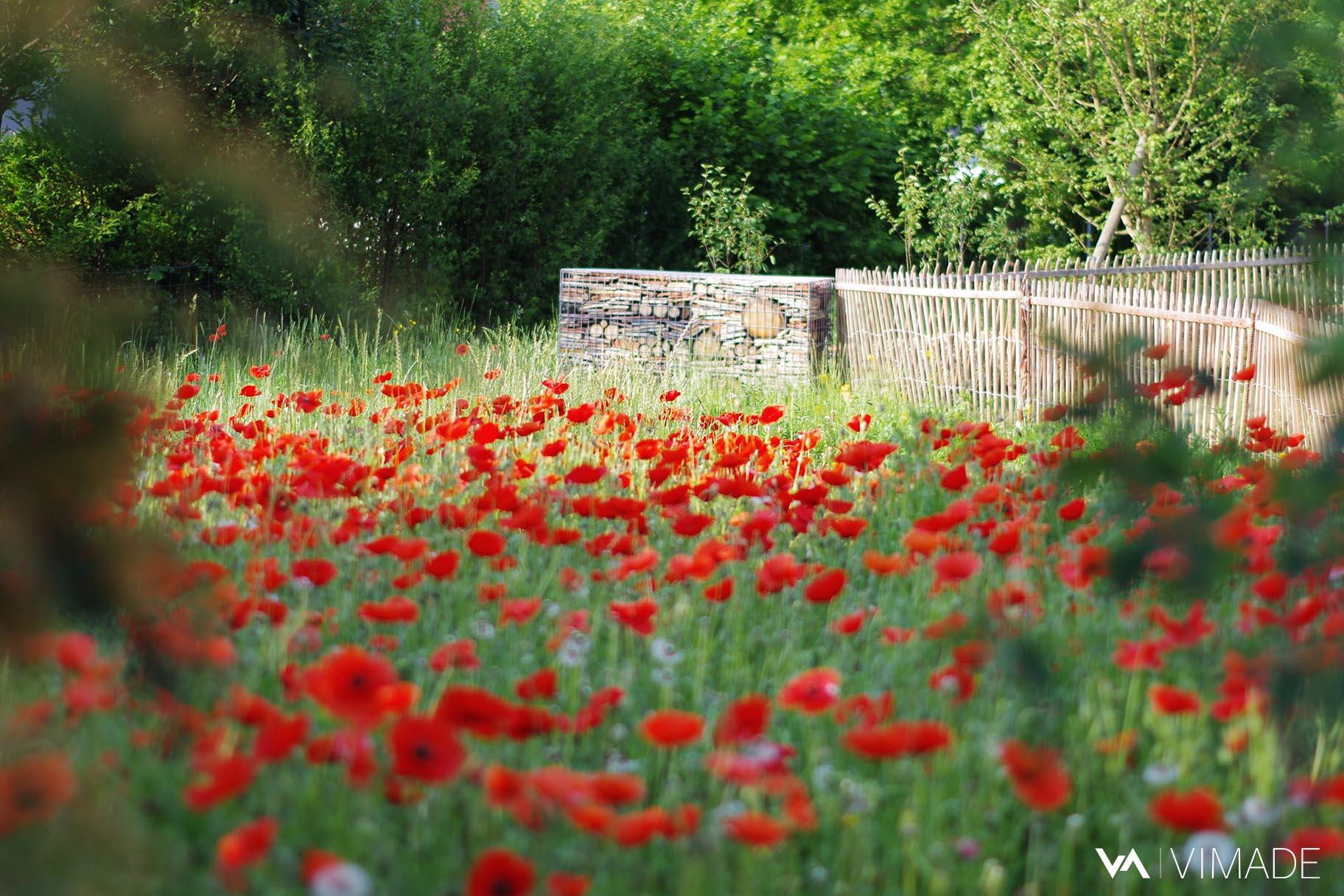 Parc des Tuileries à Bellevue offrant prairies fleuries, hôtels à insectes, refuge pour la faune, nature en ville, végétation indigène et espaces d'agrément par le bureau VIMADE Architectes paysagistes Genève.