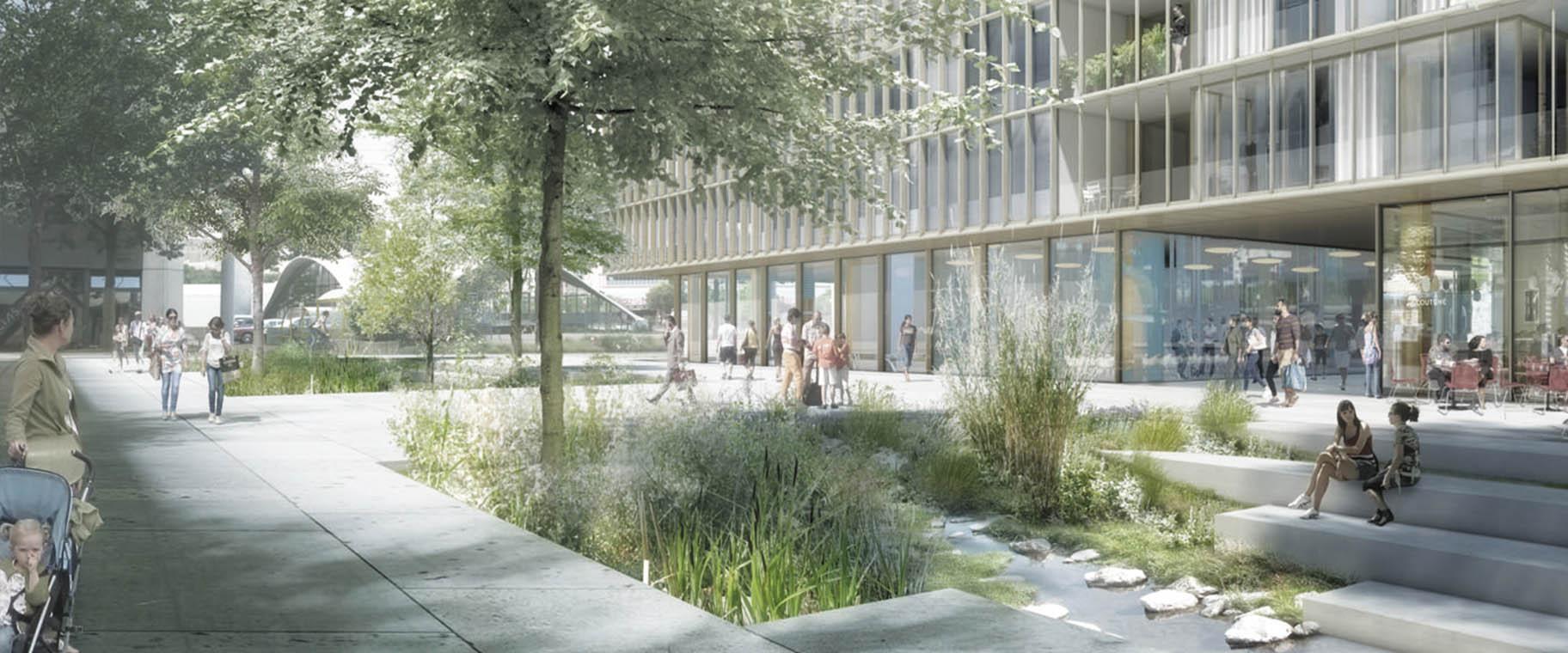 Renaturation de la Drize et aménagements paysagers pour le concours PAV Etoile 1 de la banque Pictet.